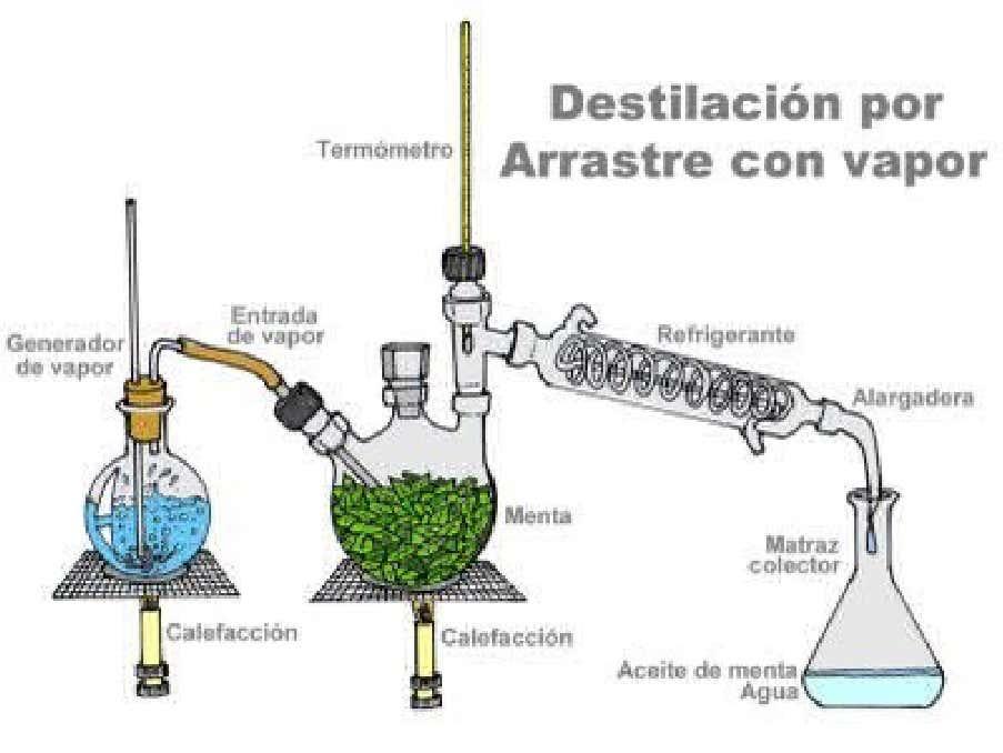 Figura No.5. Destilación por arrastre con vapor